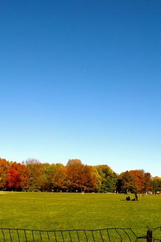Fall by Tanuki
