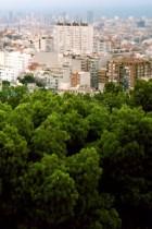 Barcelona by Elo Vazquez