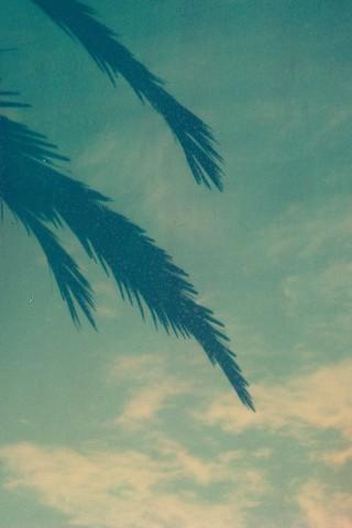 Poolgapola#1 by Assaf Iglesias