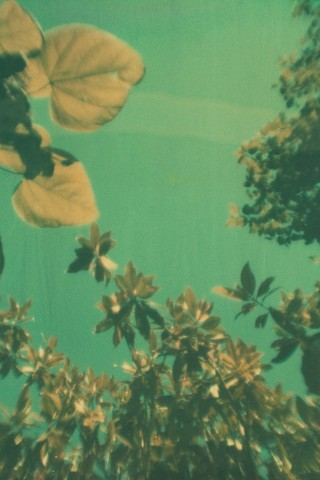 Poolgapola#2 by Assaf Iglesias
